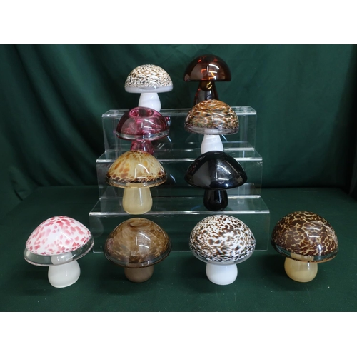 44 - Wedgwood glass mushrooms in various colours and designs, H10cm (10)...