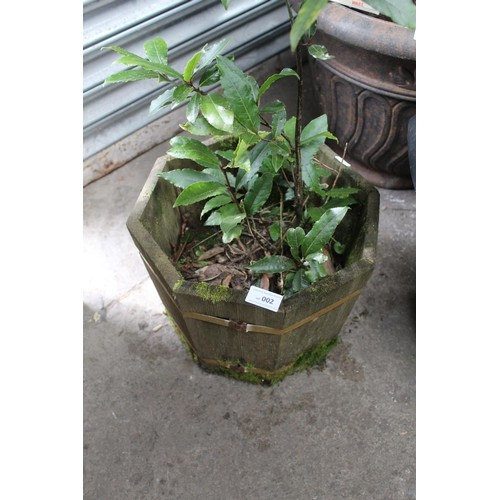 2 - WOODEN HEXAGIONAL PLANTER WITH PLANT