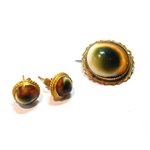 5 - Victorian operculum brooch and a pair of similar ear studs, in gold. (3)...