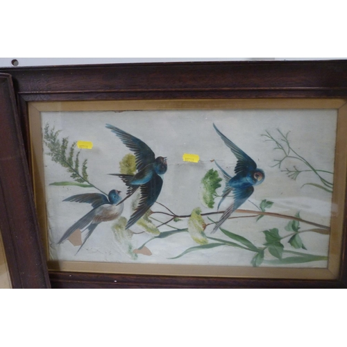 49 - 19th century school.<br />Pair of pictures, swallows in flight.<br />Watercolour. (2)....