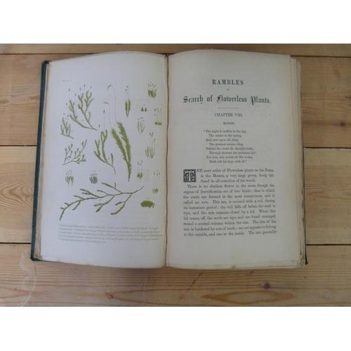 26 - PLUES MARGARET. 6 vols. re. plants & natural history. Illus. Orig. cloth, mixed cond. 1860...