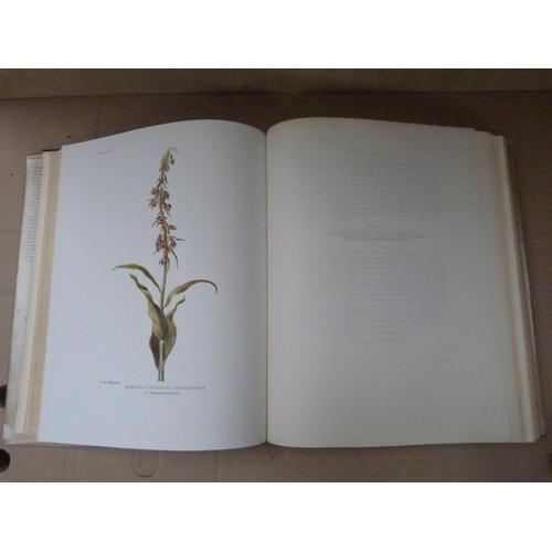 49 - GODFERY M. J.Monograph & Icongraph of Native British Aorchidaceae. Col. plates. Quar...