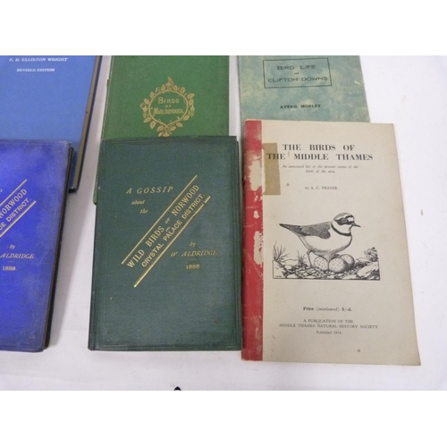 60 - (BEWICK T.).Anecdotes of Birds or Short Accounts of Their Habits in a State of Nature. W...