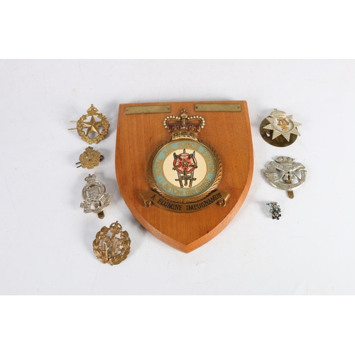 25 - RAF shield plaque and a collection of military badges