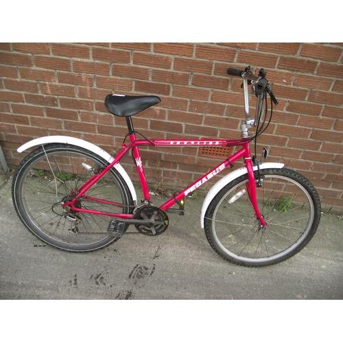 4 - pegasus bike...