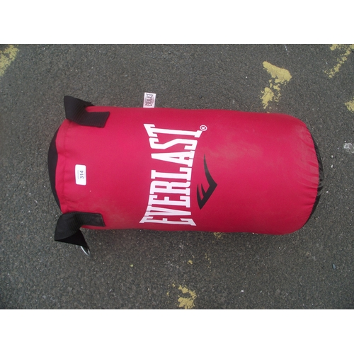 35 - Everlast Punchbag...
