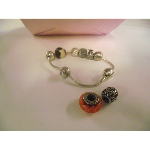 89 - Pandora stamped bracelet and various charms