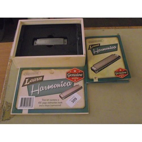309 - Cased Harmonica