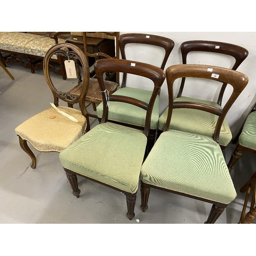 50 - 19th cent. Rosewood chairs (4) with fluted legs and green upholstery, plus two mahogany salon chairs...