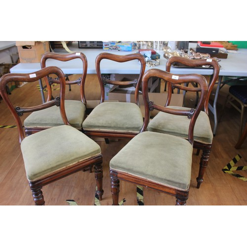 18 - A set of five Victorian rosewood kidney back dining chairs on turned, ringed and lappeted legs.