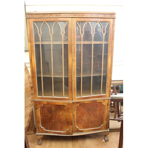 26 - Walnut bow fronted display cabinet, pair of glazed doors enclosing two shelves, cupboard under on sh...