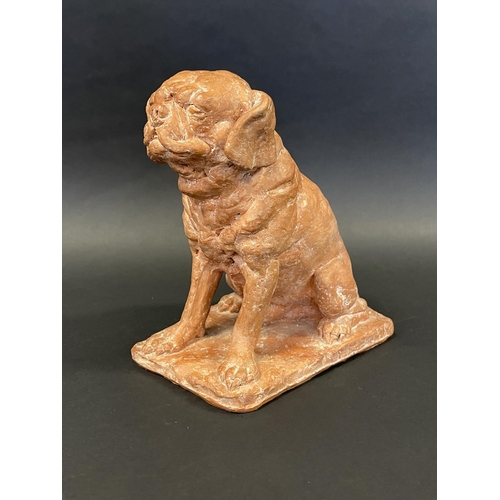 1018 - Rhonda Barbara (Barbara) Tribe (1913-2000) Australia, terracotta seated pug dog, approx 28 cm high x...