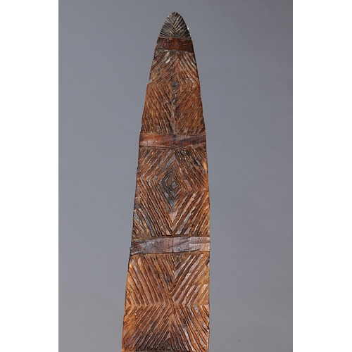 1008 - LARGE NARROW SHIELD, SOUTHEAST AUSTRALIA, carved and engraved hardwood and natural pigment (no custo...