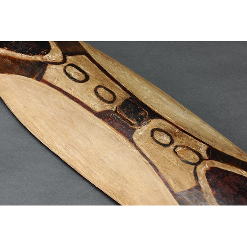 1023 - RARE RAINFOREST SHIELD, NORTH-EAST QUEENSLAND, Carved and engraved wood and natural pigment (no cust...
