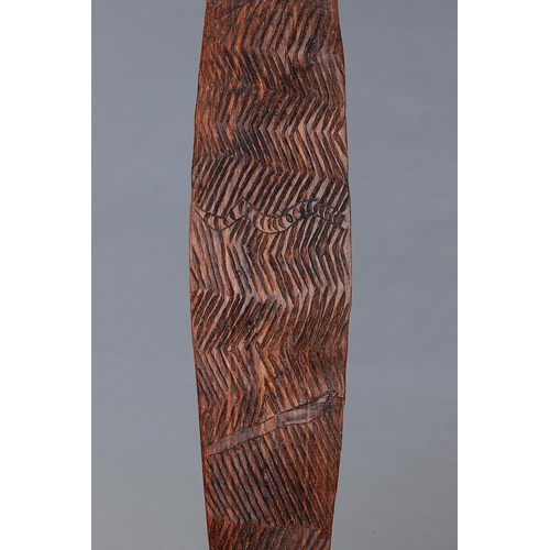 1026 - LARGE NARROW SHIELD, SOUTHEAST AUSTRALIA, Carved and engraved hardwood (no custom stand) Carved in h...