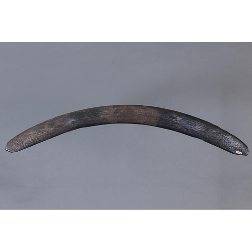 1028 - FINE EARLY ENGRAVED BOOMERANG, WESTERN NEW SOUTH WALES / SOUTHERN QUEENSLAND, Carved and engraved ha...