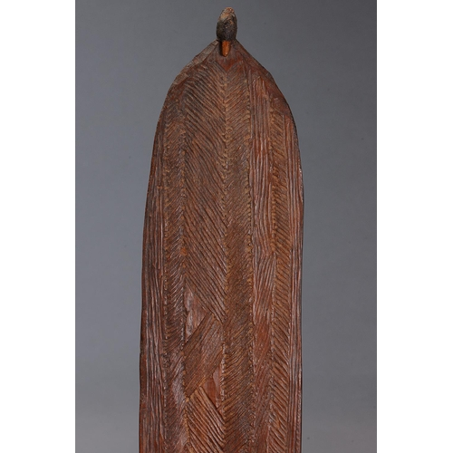1042 - LARGE EARLY INCISED SPEAR THROWER (WOOMERA), WESTERN AUSTRALIA, Carved and engraved hardwood and spi...