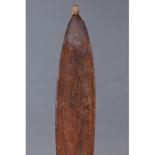 1044 - INCISED SPEAR THROWER (WOOMERA), WESTERN AUSTRALIA, Carved and engraved hardwood (with custom stand)...