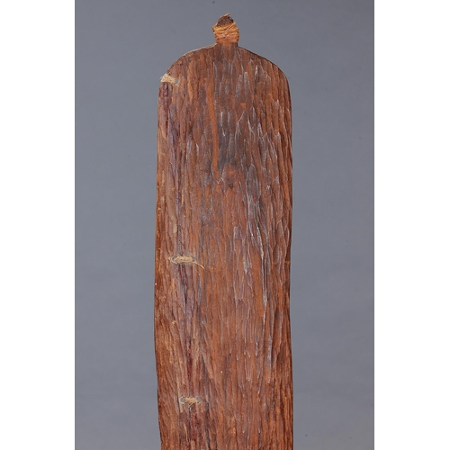 1047 - FINE LARGE INCISED SPEAR THROWER (WOOMERA), WESTERN AUSTRALIA, Carved and engraved hardwood and natu...