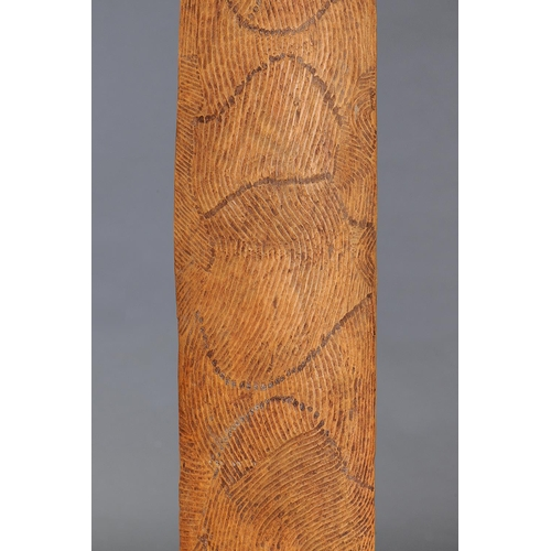 1050 - CEREMONIAL SHIELD, WESTERN AUSTRALIA, Carved and engraved hardwood and natural pigment (with custom ...
