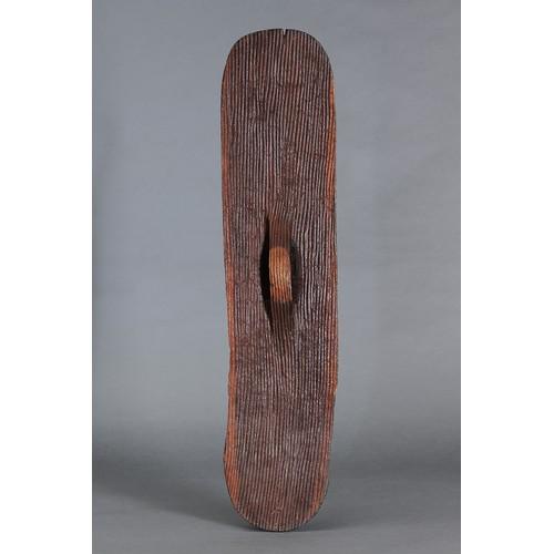 1020 - SUPERB WUNDA SHIELD, WESTERN AUSTRALIA, Carved and engraved hardwood and natural pigment (no custom ...